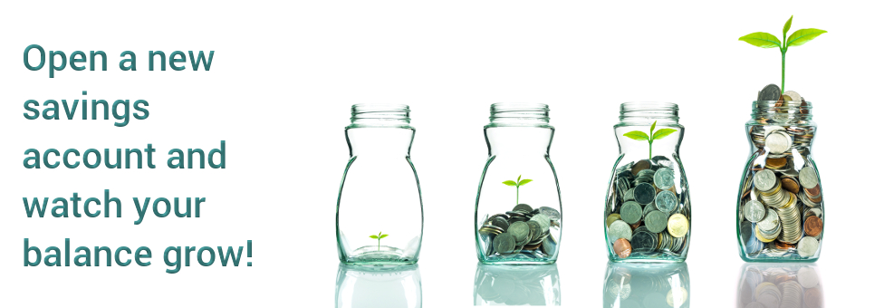 Open a new savings account and watch your balance grow!